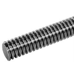 DIN 103 Vřetena s lichoběžníkovým závitem a matice, jednozávitové, pravostranné photo